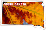 State of South Dakota Magnets